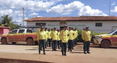 ibama-vai-contratar-brigadas-para-prevenir-e-combater-incendios