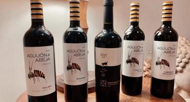 adega-junqueira-deguste-vinhos-permita-se-a-essa-experiencia